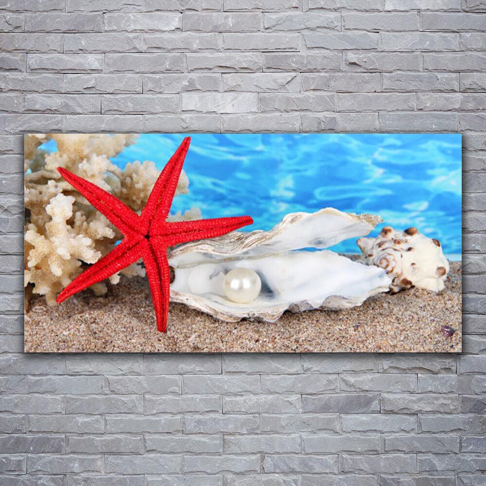 Verre Imprimer Wall Art Image 120x60 photo étoile de mer coquillages Nature
