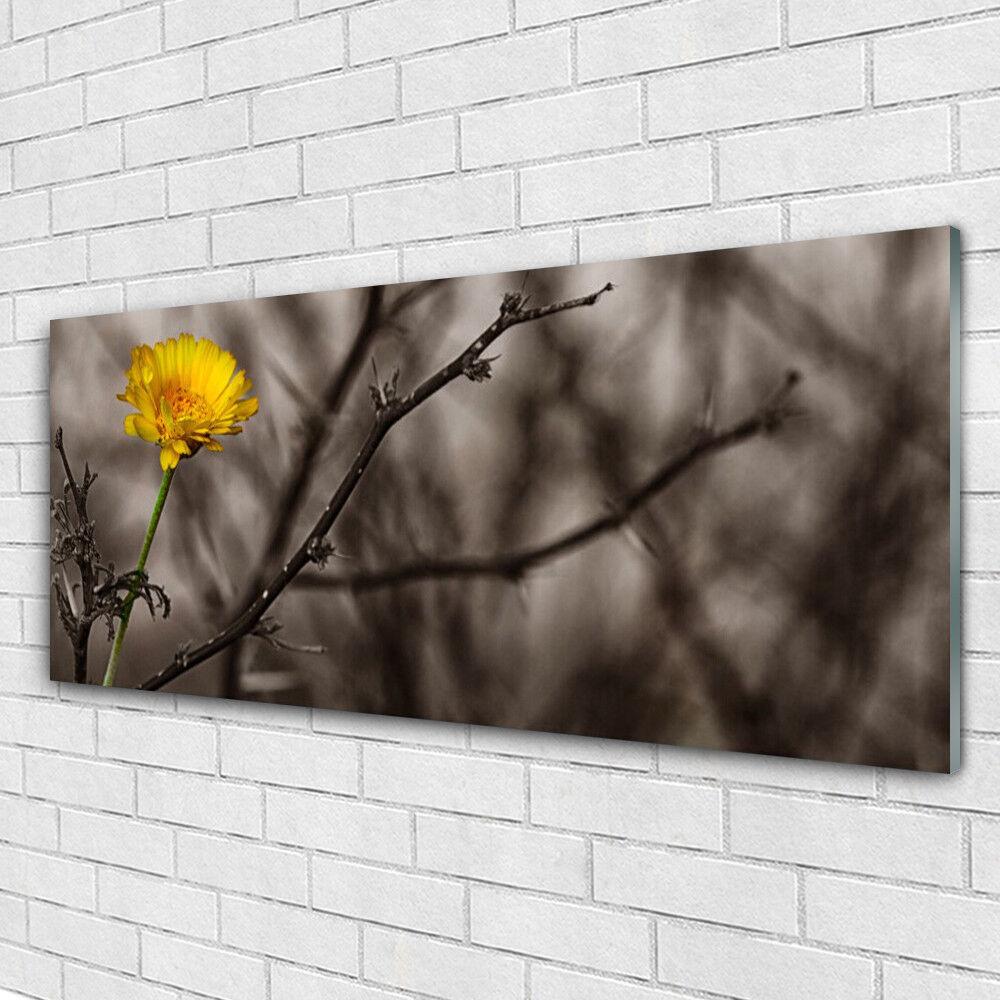 Impression sur verre Wall Art 125x50 Photo Image Branch Fleurs