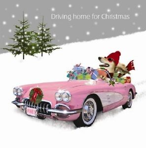 Driving-Home-for-Christmas-Shopping-Saluki-Dog-in-Car-10-pk-luxury-cards-glitter