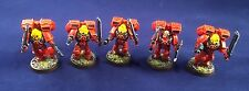 Pro Painted Blood Angels Assault Marines