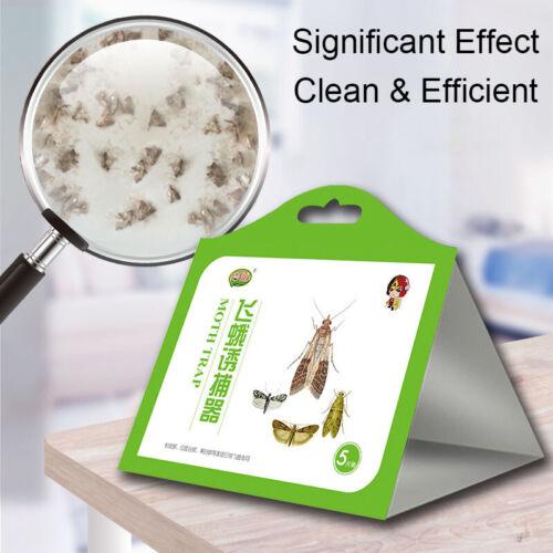5x//pack Pantry Kitchen Food Moth Pheromone Attractant Moth Killer Moth Trap L UR