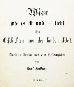 Haffner, Vienna come è e – ama - 1871 Trivial letteratura-COSTUMI STORIA