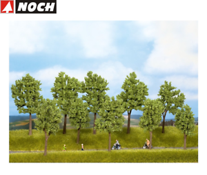 NOCH-24210-Baeume-Fruehling-4-10-cm-hoch-10-Stueck-NEU-OVP