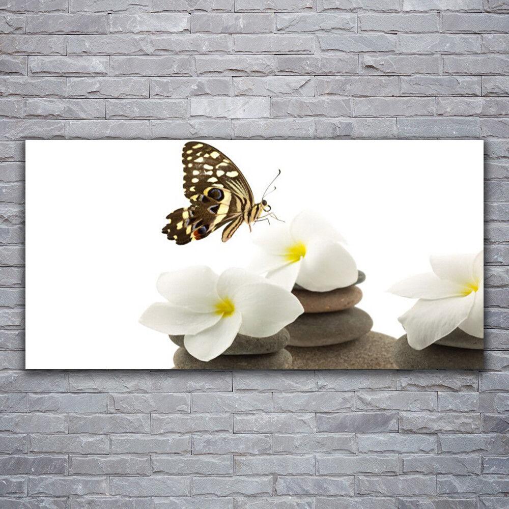 Photo sur toile Tableau Image Impression 120x60 Floral Papillon Fleurs Pierres