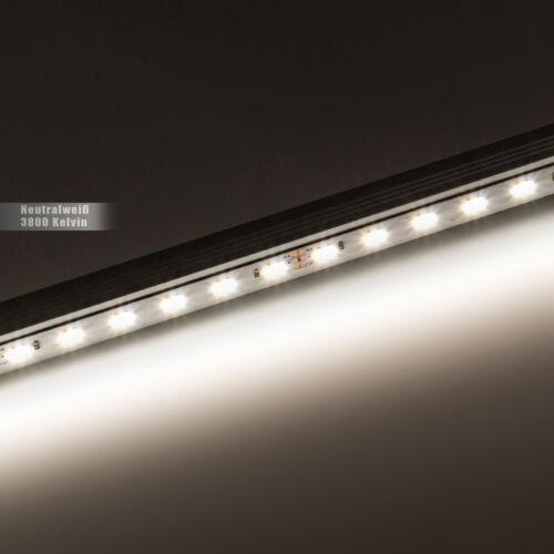 60 DEL//m 12vdc ip65 RA 90+ Neutralweiß ✅ AB 0,5m- 20 m DEL Stripe 3-chip 5050