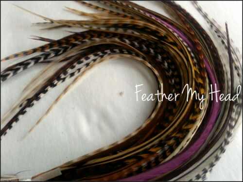 100 Feathers Natural Variety Pack 7 to 9 18-28 cm Lot 1 Long