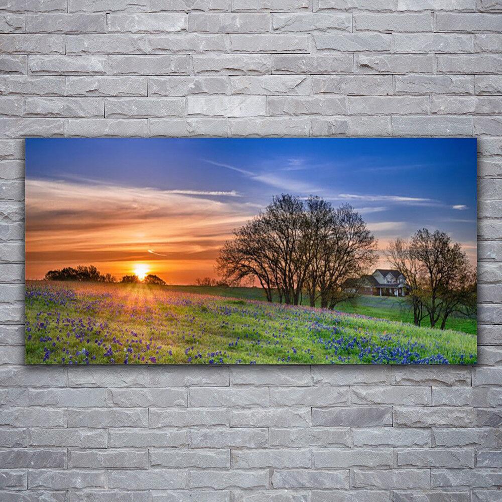 Photo sur toile Tableau Image Impression 120x60 Paysage Soleil Prairie