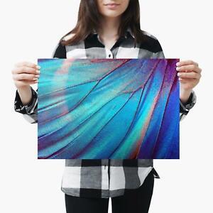 A3-Blue-Morpho-Butterfly-Wing-Makro-Groesse-a3-Poster-Druck-Foto-Kunst-Geschenk-3486