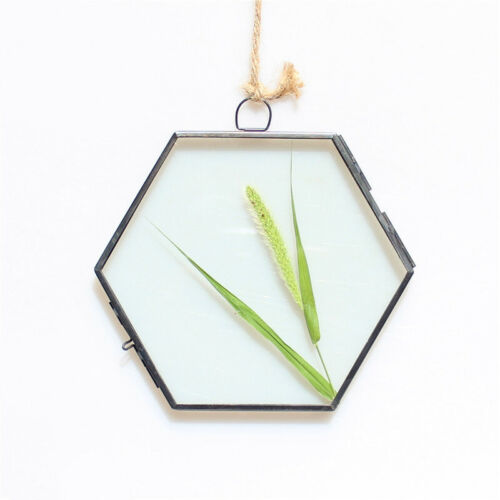 2019 Antique Hexagon Metal /& Glass Hanging Floating Picture Photo Frame 1x