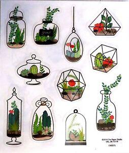 Terrarium Plants Ferns Cactus Home Garden Ps Clear Stickers Ebay