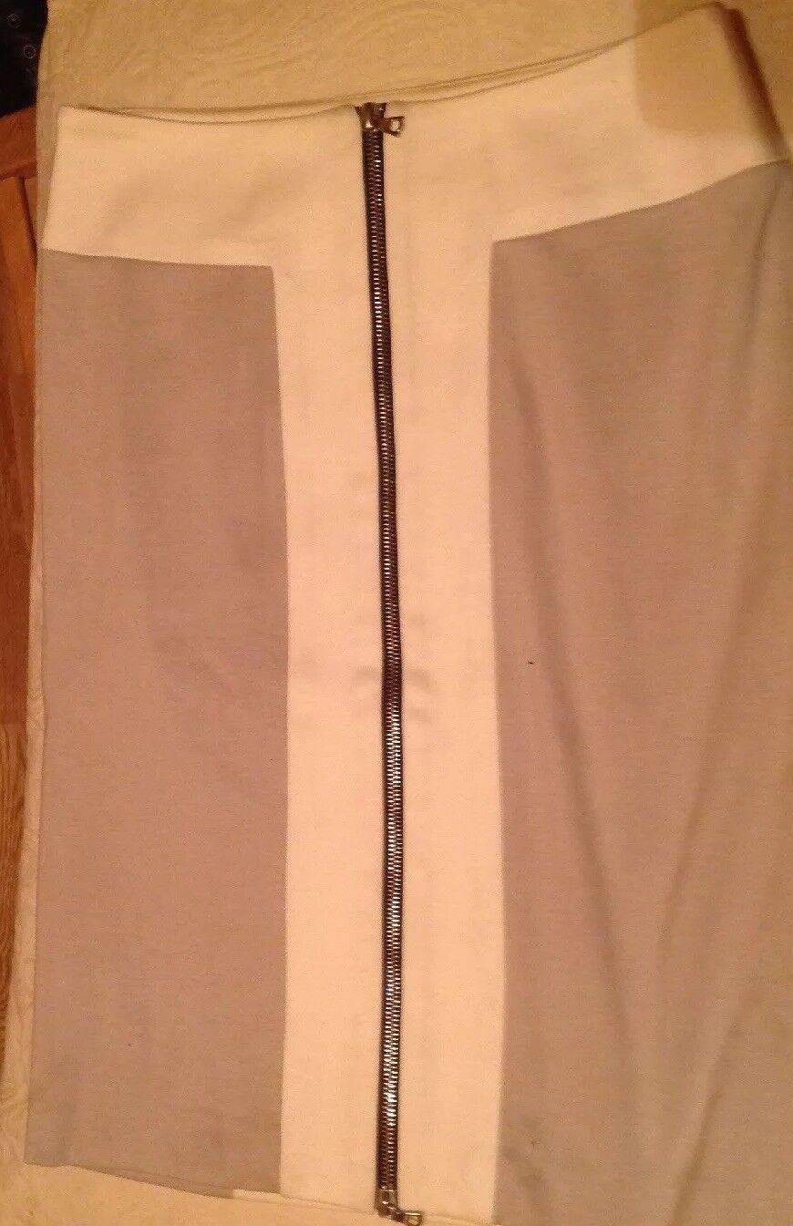 RAG & BONE skirt size 27 (sz 10)