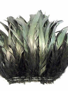 "50+ BLACK IRIDESCENT ROOSTER COQUE TAILS FEATHER 9-10""L"