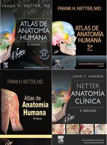 Atlas De Anatomia Humana Frank H Netter Pdf