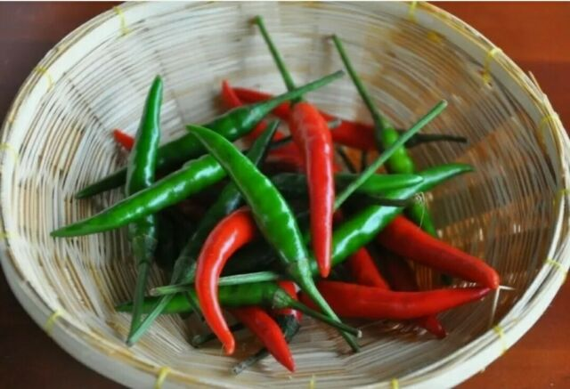 THAI CHILLI - Very Hot - Heavy Yield - 30 Seeds- Prik Chee Fah - ORGANIC