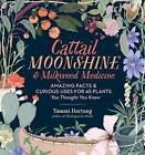 Cattail Moonshine & Milkweed Medicine by Tammi Hartung (Hardback, 2016)