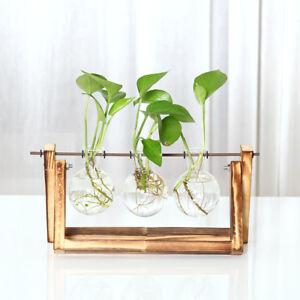 Super Landhausstil Mini Hängende Glasvase mit Holztablett, Hydrokultur #DL_11