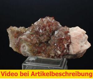7242-Fluorit-Kupferkies-Baryt-ca-5-12-5-cm-Frohnau-Sachsen-Erzgebirge-2009-MOVIE