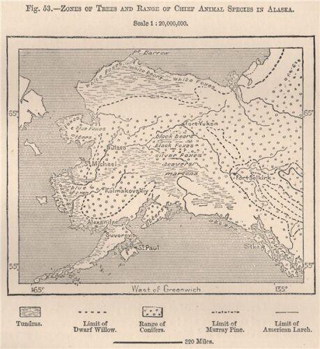 Zones of Trees /& range of chief animal species in Alaska.Bears foxes 1885 map