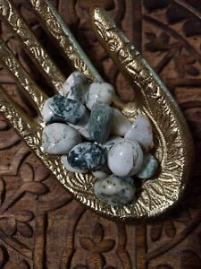Tree-Agate-Tumbled-Stones-for-Grids-Crystals-Healing-Natural-Minerals-Raw-Rough