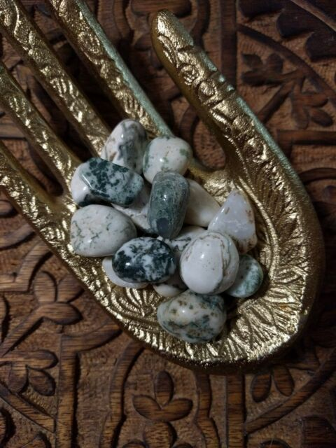 Tree Agate Tumbled Stones for Grids Crystals Healing Natural Minerals Raw Rough