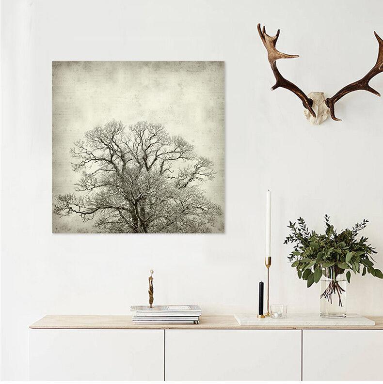 3D Schöne Bäume 96 Fototapeten Wandbild Fototapete BildTapete Familie AJSTORE DE