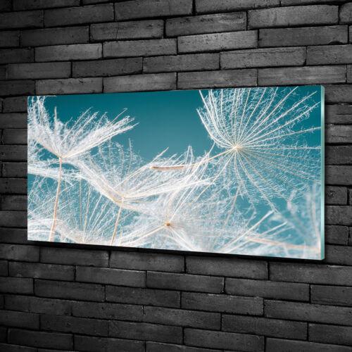 Glas-Bild Wandbilder Druck auf Glas 100x50 Deko Blumen & Pflanzen Pusteblume