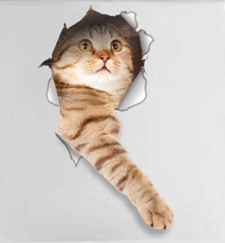 """14148 CAT IN A HOLE 3D Removable 13/"""" x 7/"""" Die-cut Wall Refrigerator Decal"""