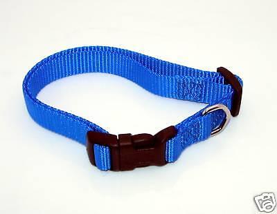 "NEW 5//8/"" W Nylon Dog Paw Printed Collar Small 11-16/"""