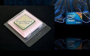LGA2011-CPU-Case-Clamshell-for-Intel-Xeon-Processor-Lot-of-10-25-40-75-150