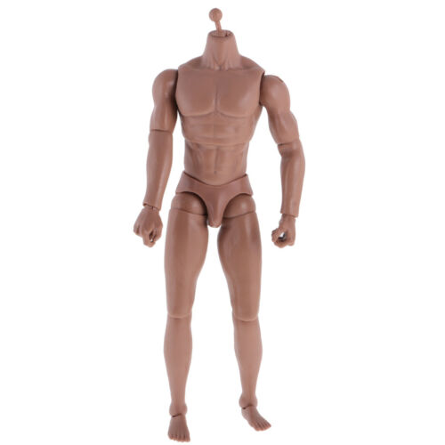 "Wide Shoulder Muscular 1:6 Male Body wi// Neck For Hot Toys 12/"" Action Figure"