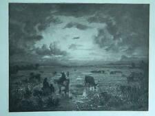 XXe ou avant ancienne gravure originale Anonyme Paysage de Camargue Taureau