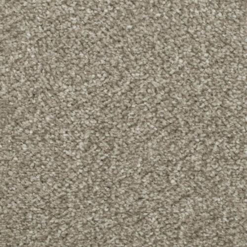 Carpet Cheap Budget Saxony Felt Backing Carpets Hard Wearing Lounge Bedroom 5m