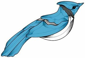 Stained Glass Supplies GST Color Bevel Cluster Blue Jay BC041