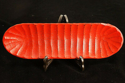 MINT Japan Lacquered Woodcarving SASHIMI Plate Red Free Ship 503i15