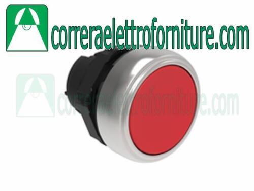 DEWALT dt2050-qz Pack de 5 76mm HC coupage du bois lames de scie sauteuse