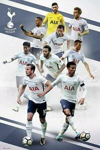 Tottenham-Hotspur-Players-2017-2018-Maxi-Poster-61cm-x-91-5cm-new-and-sealed