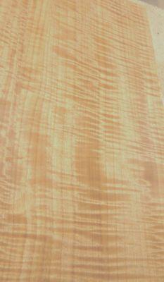 "Anigre Figured Fiddleback wood veneer 12/"" x 12/"" raw no backing AAA grade 1//42/"""