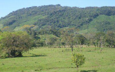Rancho en Venta en el municipio de Salto de Agua