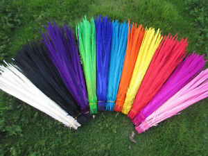 New 10-100pcs beautiful pheasant tail feather 20-22 inches a variety of colors