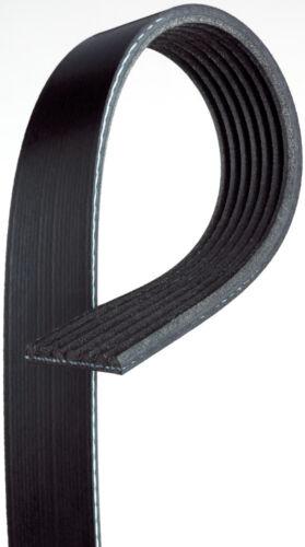 Serpentine Belt-Premium OE Micro-V Belt Gates K070667