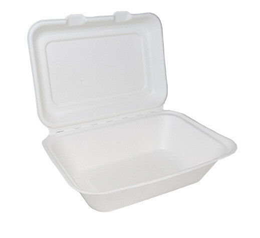 500 Weiß 7x5  Paper Lunch Burger Box Container Biodegradable Bagasse Sugarcane
