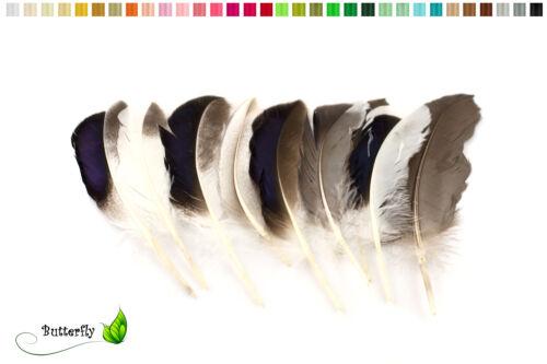 10 Entenfedern 10-15cm Spiegelfedern schillernd Schmuckfedern Indianerfedern Hut
