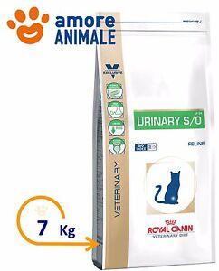 royal canin gatto urinary  Royal Canin Gatto, v-diet URINARY S/O - 7 kg - Crocchette per Gatti ...