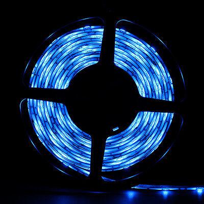 Blue Waterproof 5050 SMD 300LED 5M 60LED/M Light Strip Flexible 12V
