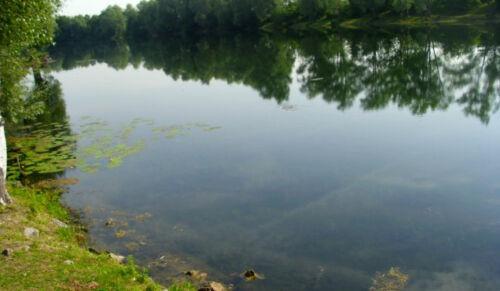 EPDM Pond Liner 8,99 Euro//m²