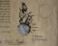 thumbnail 1 - 1715 Fleet Mexico Silver Cob 4 Reale Shipwreck Coin,Mel Fisher Cobb Co. COA #349