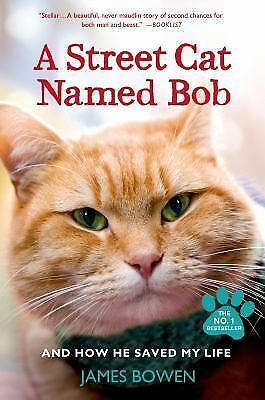 A Street Cat Named Bob by James Bowen (Paperback) Brand New Free Shipping