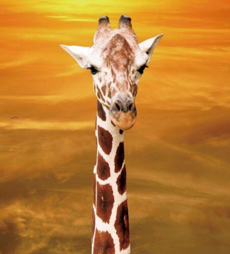 3D Carte de vœux Girafe Vierge à l/'intérieur 3D 2-Flip Image