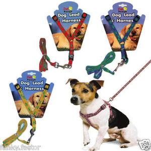 Pet-Dog-Puppy-Doggy-Nylon-Leash-Lead-Harness-Tool