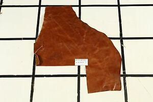 "Gorgeous ""Candelaria"" Brown Scrap Leather Hide Approx. 3 sqft. G15W31-7"